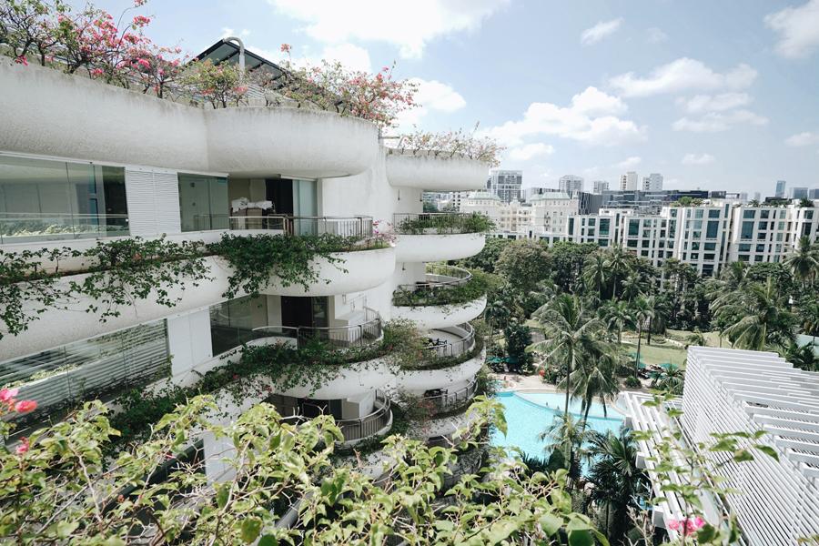 Hotels We Love Shangri La Hotel Singapore Insider City Tips Dame Traveler